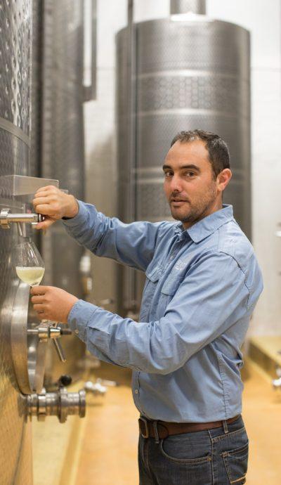 White wine decanting